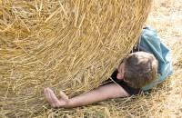 Odszkodowanie za wypadek w rolnictwie dla osób pracujących w gospodarstwie